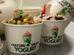 culture shock yogurt grass valley california