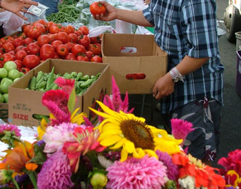 grass valley farmers market image 5